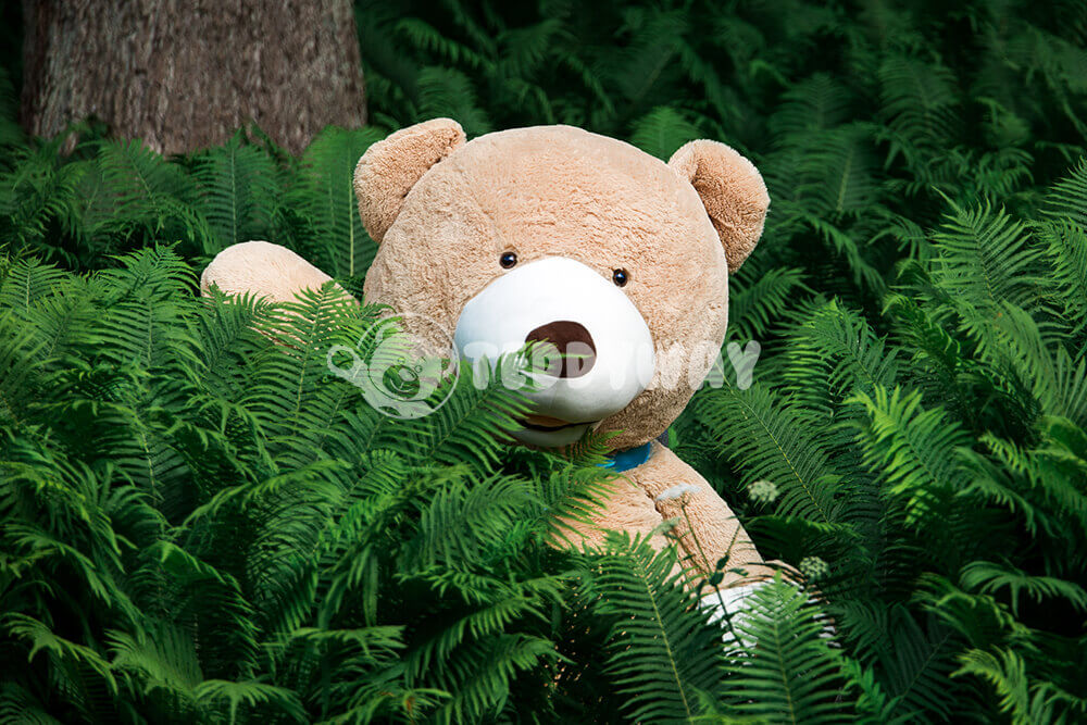 Ours Teddy géant dans la jungle - TeddyWay.fr