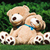 Ours Teddy assis sur l'herbe - TeddyWay.fr